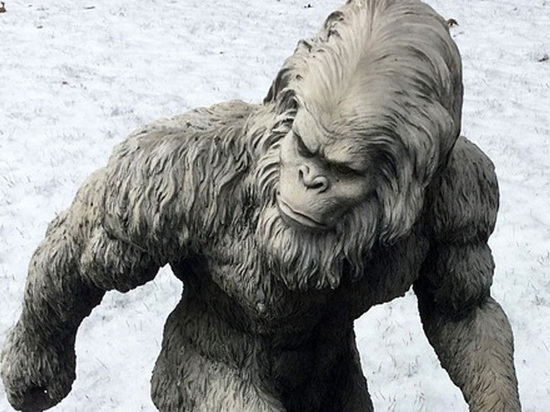 СМИ: представлены доказательства существования снежного человека