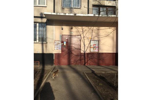 Петербургский смертник Акбаржон Джалилов репетировал теракт две недели
