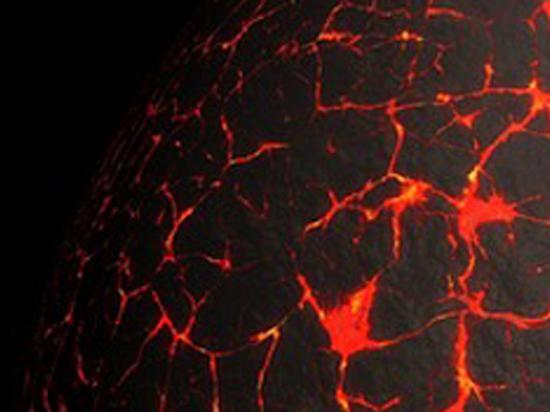 Планетологи разобрались, почему Марс оказался меньше Земли