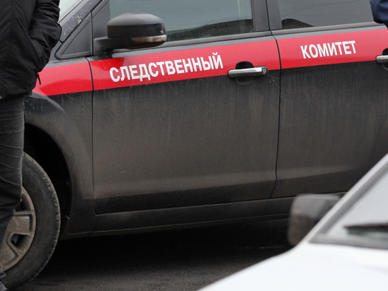 Бастрыкин поручил расследование нападения на 18-летнюю курсантку МВД опытным следователям