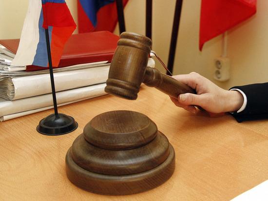 Против Светланы Дель возбуждено уголовное дело