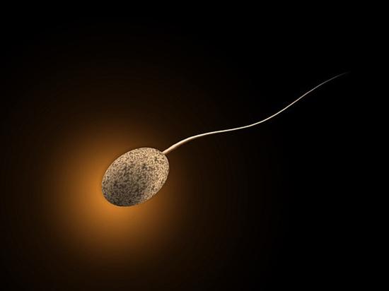 Найден способ лечить рак с помощью сперматозоидов
