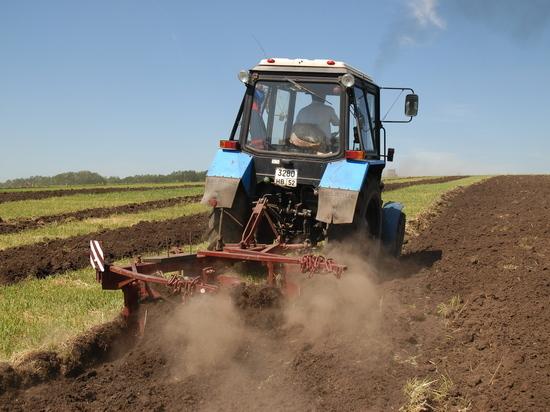 Что может предложить нижегородская наука сельскому хозяйству