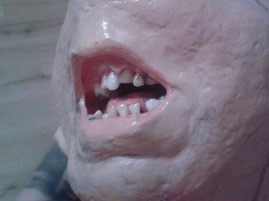 Зубастый монстр в Питере появился в назидание неряхам