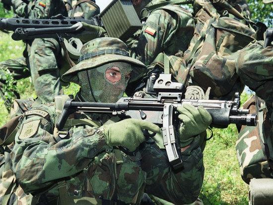 Жители Литвы сдали страну «зеленым человечкам»