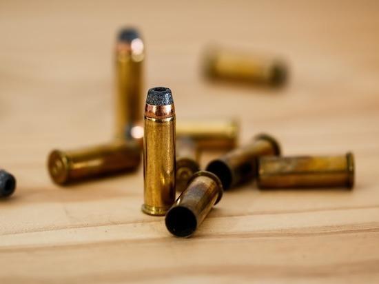 «Единая Россия» решила отозвать законопроект о стрельбе в толпе