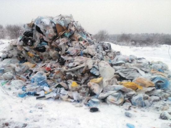 Утилизационная катастрофа: почему жители на свалках находят гланды и почки