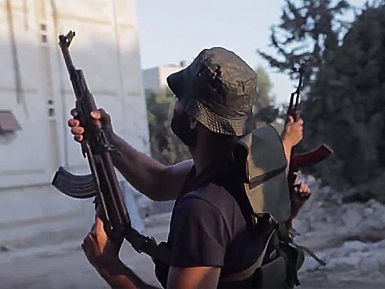 ВИраке заявляют овозможном «альянсе» боевиковИГ иАль-Каиды