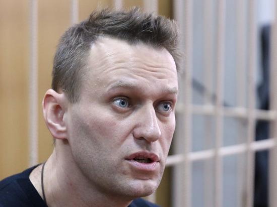 Адвокат оценил шансы иска Навального за сравнение с Гитлером