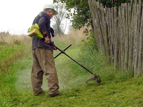 Дачников заставят косить траву рядом с участком