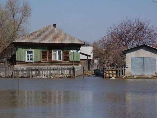 Уровень воды в Оби возле Барнаула в 15 см от критической отметки
