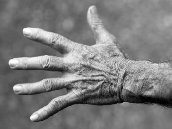 Ученые измерили жизнь физиков и лириков: долгожителями признаны экономисты