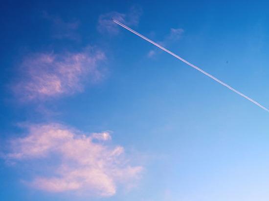 Самолет с руководством «ЕР» аварийно затормозил при взлете в Омске