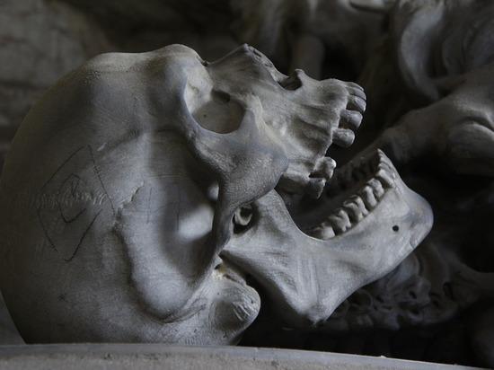 Раскрыта тайна человеческих останков, выброшенных московским следователем на помойку