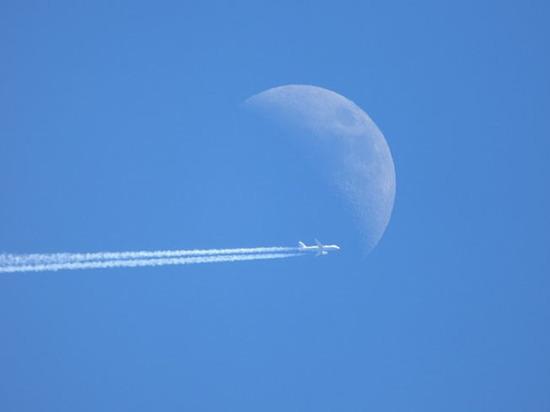 Росавиация отвергла претензии жаловавшихся на отстранение от полетов летчиков