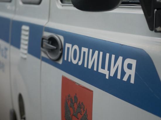 Москвичка избила сына во время скандала с бывшим мужем