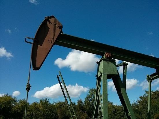Нефть начала дорожать на фоне договоренности Москвы и Эр-Рияда