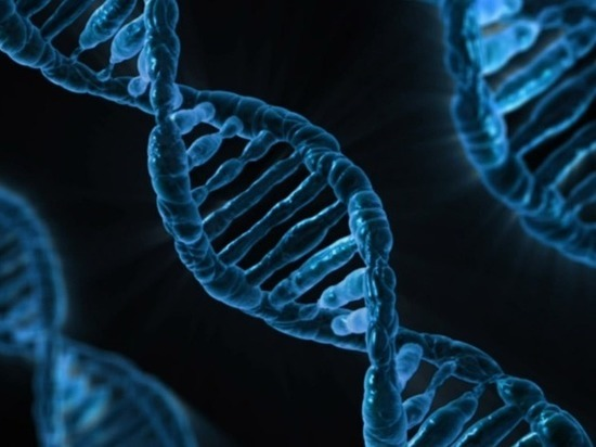 Ученые смогли восстановить белок после разрушения его молекул