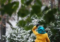 Прогнозы синоптиков не сбудутся: снегопад обойдет Москву стороной