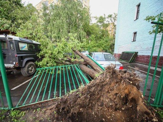 Куда идет ураган в москве сейчас 2018