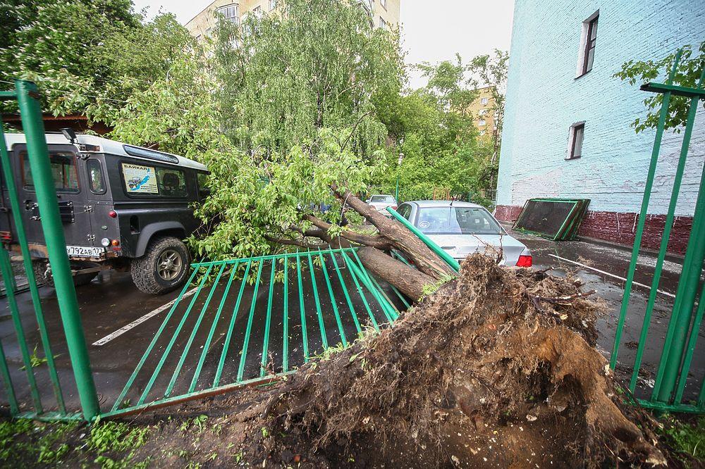 Собянин: последствия урагана в Москве ликвидируют за два дня