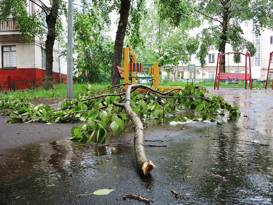 Специалисты предрекли второе пришествие урагана