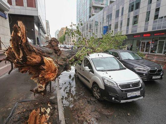 Мэр Москвы: семьи погибших от урагана получат по миллиону рублей