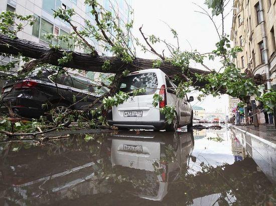 МЧС пытается оправдаться за отсутствие оповещения об урагане в Москве