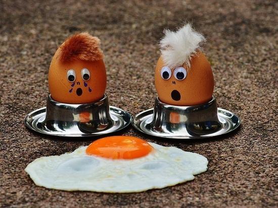 Педиатры объяснили, почему детям следует есть яйца