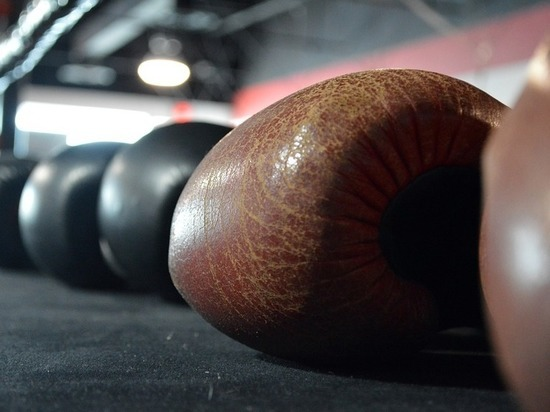 Российского боксера Кушиташвили не пустили на чемпионат Европы в Харькове