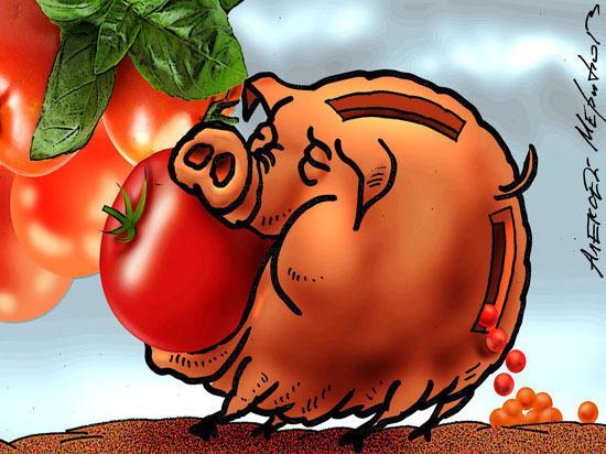 Страна вечнозеленых помидоров: аграрии попросили Путина продлить антисанкции