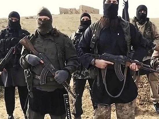 Россия проигрывает войну за умы молодых мусульман