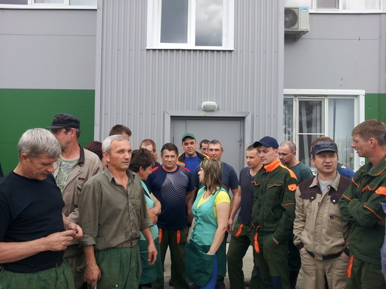 Воронежскому «Эколайнеру» грозит рейдерский захват?