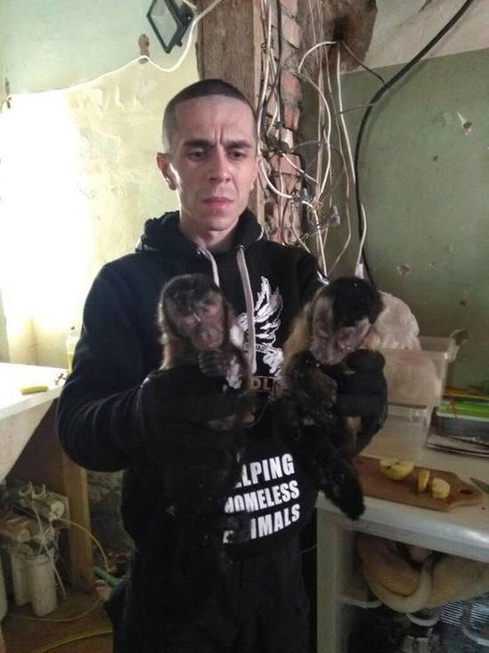 В Подмосковье зоозащитники обнаружили склад с замороженными обезьянами