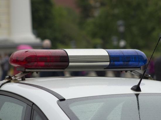 В столице России задержали 2-х мужчин, избивших полицейского зазамечание