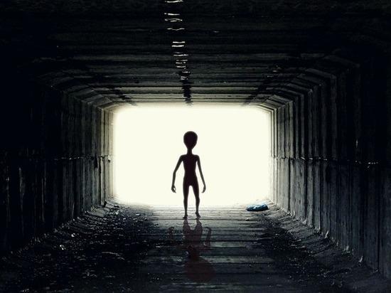 В NASA прокомментировали слухи об обнаружении инопланетной жизни