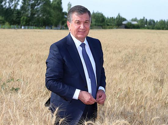 """Авторитарный реформатор: президент Узбекистана делает из страны """"азиатского дракона"""""""