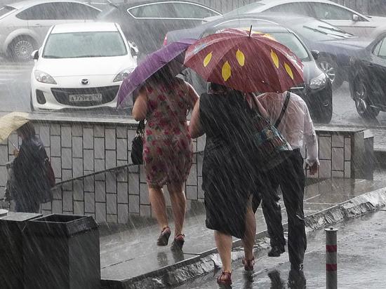 Дожди вора: почему чиновники МЭР списали безработицу на плохую погоду