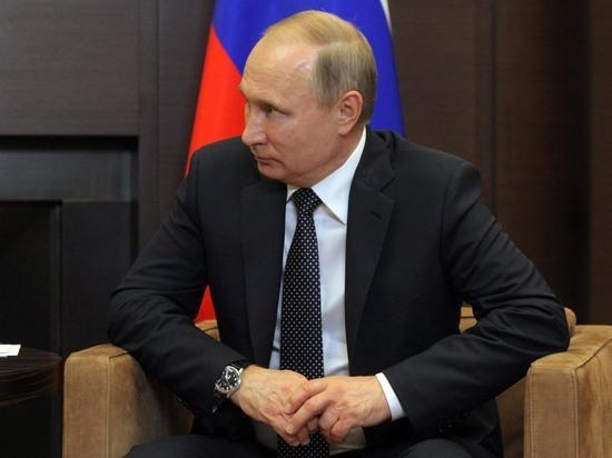 """Путин попросил прокуратуру разобраться с """"борзотой"""" в Тагиле"""