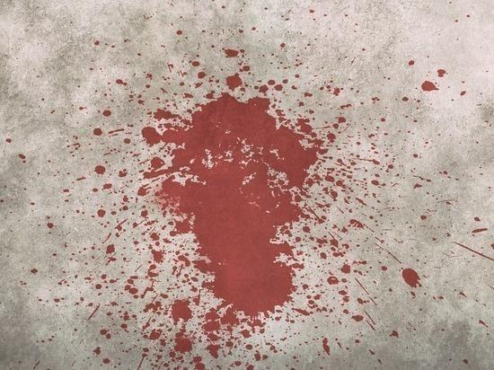 В Москве убит 2-летний ребенок, страдавший врожденным недугом, задержан отец-садист