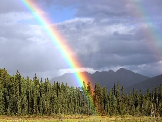 Ученые: изменения климата пойдут на пользу Сибири