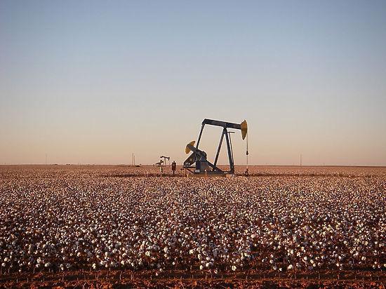 Россию заподозрили в противодействии разработкам сланцевой нефти в США