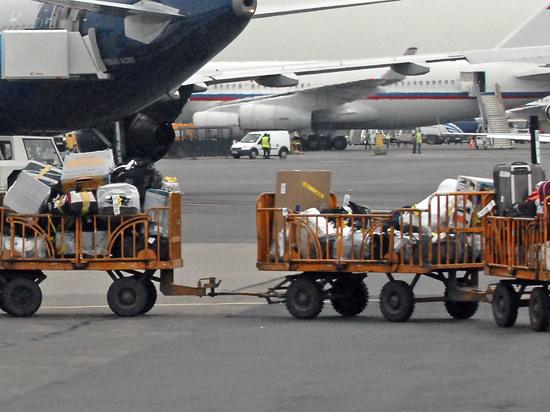 Совфед отменил бесплатный авиабагаж: мобильник и зонт за деньги