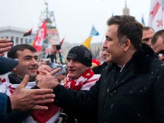 """""""Прощай, обдолбанный мишка"""": за что Саакашвили лишили украинского гражданства"""