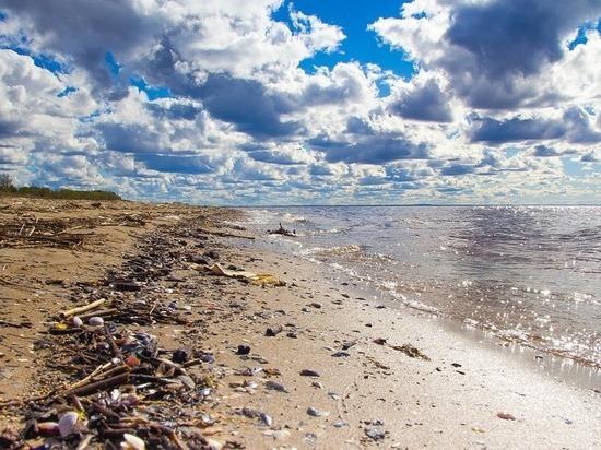 С сегодняшнего дня человечество живет «в долг», заявили экологи