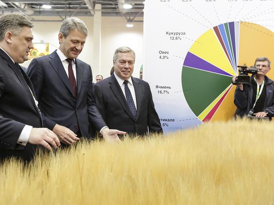 Ростовская область – первая по урожаю хлеба в России