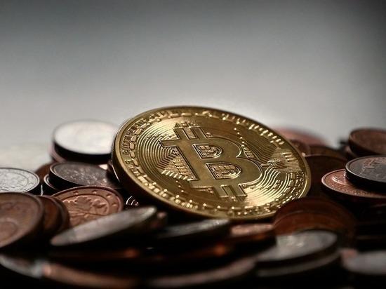 Шнуров посвятил стихи биткоину: криптовалюту ждет обвал