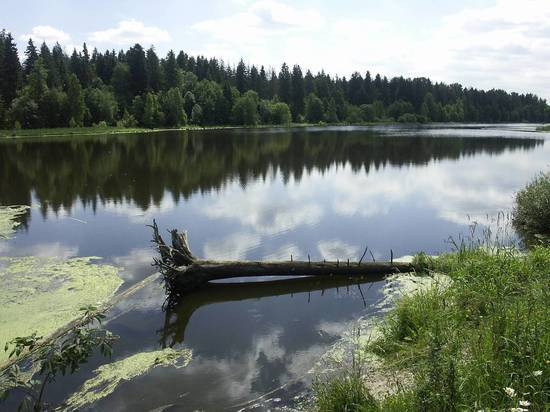 Заниматься сексом в озере