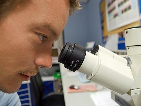 К2100 году население Земли разделится надва биологических вида— Ученый