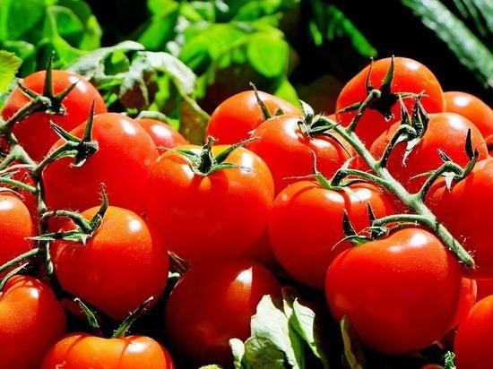 Москва заплатит за турецкие помидоры природным газом